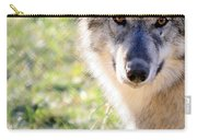 Young Gray Wolf In Light Carry-all Pouch