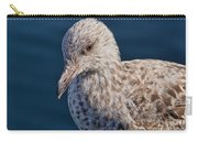 Young Herring Gull Carry-all Pouch