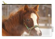 Young Horse In Winter Day Carry-all Pouch