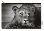 Young Lion Portrait Carry-all Pouch by Johan Swanepoel