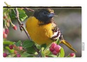 Young Male Oriole Carry-all Pouch