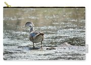 Young Male Wood Duck Carry-all Pouch