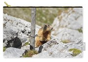 Young Marmot Carry-all Pouch