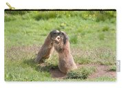 Young Marmots Carry-all Pouch