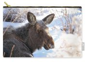 Young Moose Resting Carry-all Pouch