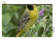 Young Orchard Oriole Carry-all Pouch