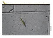 Young Praying Mantis Carry-all Pouch