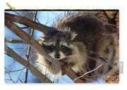Young Raccoon In Birch Tree Carry-all Pouch