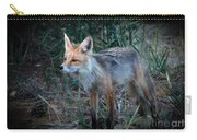 Young Red Fox Carry-all Pouch by Robert Bales