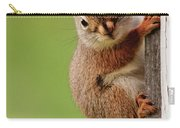 Young Red Squirrel Carry-all Pouch