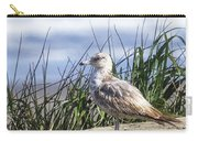 Young Seagull No. 2 Carry-all Pouch