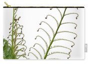 Young Spring Fronds Of Silver Tree Fern On White Carry-all Pouch