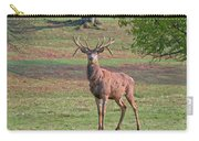 Young Stag Carry-all Pouch