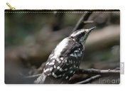 Young Woodpecker Carry-all Pouch