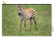 Zebra Foal  Carry-all Pouch