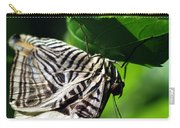 Zebra Long-wing Butterfly  Carry-all Pouch