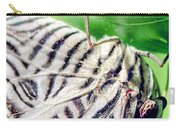 Zebra Long-wing Close-up Carry-all Pouch