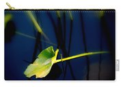 Zen Photography V Carry-all Pouch