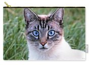 Zing The Cat Looking At Us Carry-all Pouch