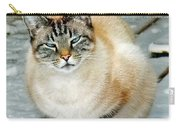 Zing The Cat On The Porch In The Snow Carry-all Pouch