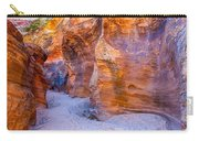 Zion Gullies Carry-all Pouch