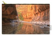 Zion Narrows Bend Carry-all Pouch