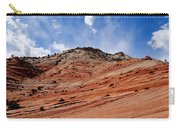 Zion National Park Carry-all Pouch