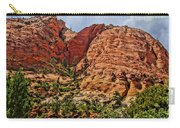 Zion National Park In Summer Carry-all Pouch