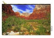 Zion Park Canyon Carry-all Pouch