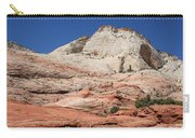 Zion Park - Rock Texture Carry-all Pouch