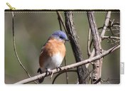 Sucarnoochee River - Bluebird Carry-all Pouch