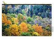 0026 Letchworth State Park Series   Carry-all Pouch