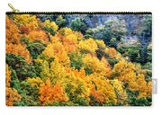 0027 Letchworth State Park Series   Carry-all Pouch