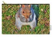 06 Grey Squirrel Sciurus Carolinensis Series Carry-all Pouch