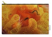 1 Cm Yellow Tube Polyp With A Small Carry-all Pouch