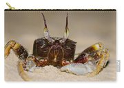A Crab On The Shore  Carry-all Pouch