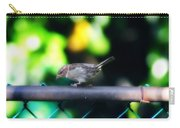 A Little Birdie Told Me Carry-all Pouch