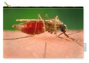 Anopheles Minimus, Malaria Vector Carry-all Pouch