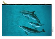 Atlantic Spotted Dolphins Carry-all Pouch