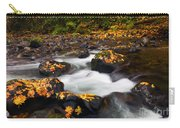 Autumn Passing Carry-all Pouch