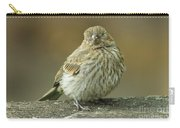 Baby House Finch Carry-all Pouch