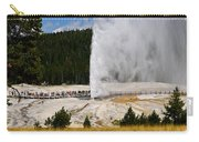 Beehive Geyser Carry-all Pouch
