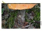 Birch Bolet Carry-all Pouch