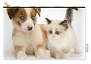 Border Collie And Birman-cross Kitten Carry-all Pouch