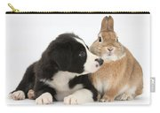 Border Collie Pup And Sandy Carry-all Pouch