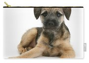 Border Terrier Puppy Carry-all Pouch