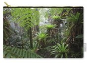 Bromeliad Bromeliaceae And Tree Fern Carry-all Pouch by Cyril Ruoso
