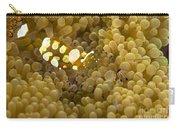 Bumblebee Shrimp On Adhesive Anemone Carry-all Pouch