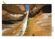 Calf Creek Falls Carry-all Pouch