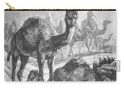 Camel Carry-all Pouch